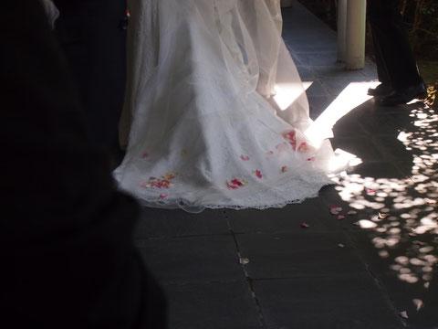夏の光と影と、レースと花びら*^^* 幸福そうな花嫁さん*^^*  とっても感動しました✾