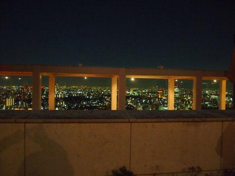 私はマンション育ちのせいか夜景よりも緑のほうが好きなのですが、この夜景は素晴らしく綺麗で感動しちゃいました^^  夜景スポットって人が多いのが難だと思うのですが、まるで貸切りの観賞会だったのがとてもよかったのかも^^