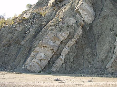 "Abb. 3: Tektonisch zerrüttete Corallinaceenschuttkalk-Bank am ""Nummulitenköpfl"" (Photo Heyng 2007))"