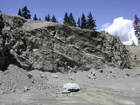 """Bad Häring, Mergelbruch: """"Oberer Zementmergel"""" mit der """"Sandsteinbank"""" (helles Band in der Bildmitte), Fundbereich von Illigeropsis ettingshausenii (Photo Heyng, Mai 2007)"""