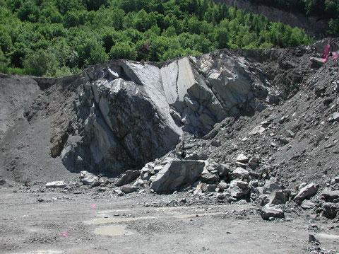 """Bad Häring, Mergelbruch: Aufschluß im """"Oberen Zementmergel"""" im Liegenden der """"Sandsteinbank"""", mit Pflanzenhäcksel und Pteropoden (Photo Heyng, Mai 2007)"""