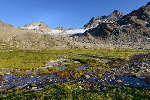 Blick auf den Piz Kesch sowie den Porchabella-Gletscher - Copyright Lorenz Andreas Fischer