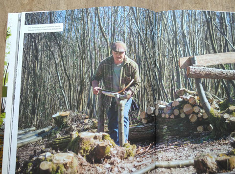 Beispielseite Waldwerk Ideenbuch
