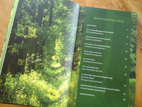 Waldgeflüster Inhaltsverzeichnis