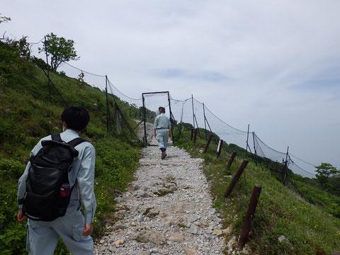 石灰岩の砕石で整備された遊歩道