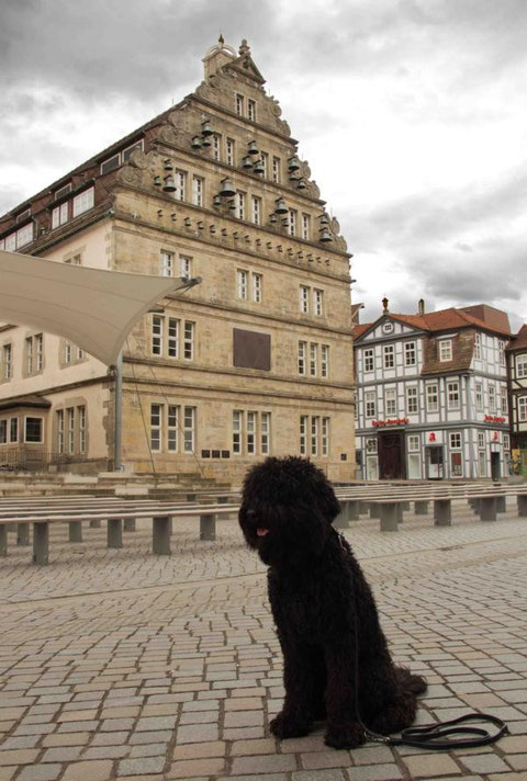 Deshalb ging auch ein Foto von mir allein vor dem Hochzeitshaus gleich neben dem Pferdemarkt in der Innenstadt.