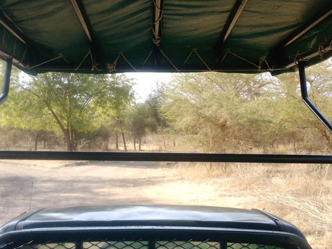 La reserve africaine de BANDIA