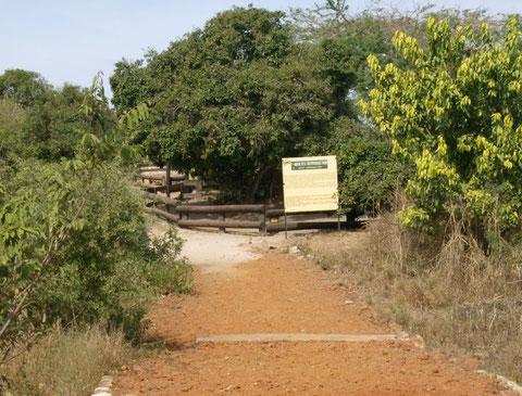 le parc du village des tortues Noflaye