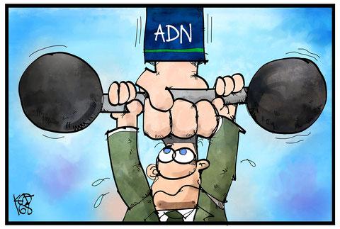 ADN Schuldnerberatung Leistungen