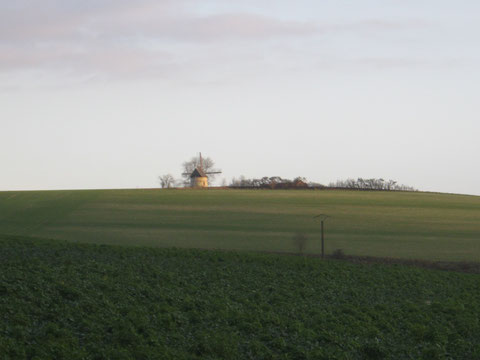 "Le moulin ""Guidon"" trone au-dessus du village d'Eaucourt."