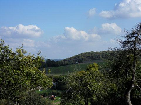 La vallée de Frosme entaille le plateau du Vimeu