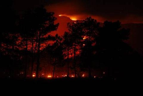El incendio comenzó en un sitio donde no se criaba ganado. Foto: Gabriel Holschneide