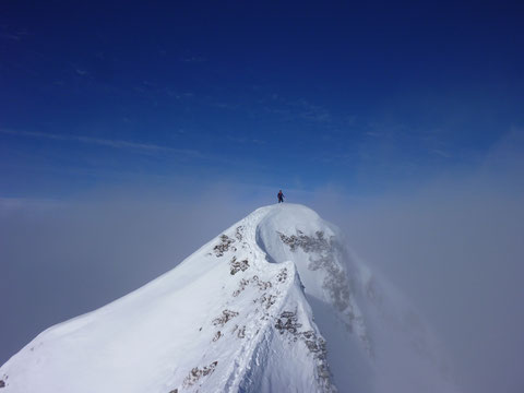 Skitour Lauiberg, Gipfelanstieg, Gipfelgrat, exponiert