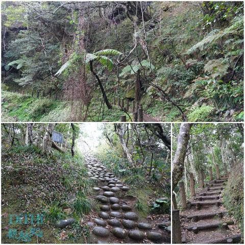 裏見ヶ滝への道に神社への入り口