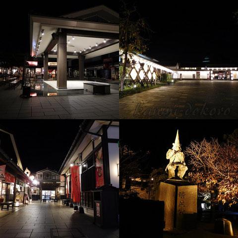夜の熊本城公園