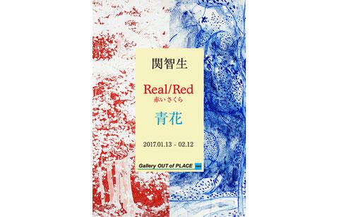 関智生 個展 「Real/Red 赤いさくら」「青花」
