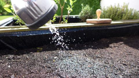 Garten - Küchenkräuter pflanzen leicht gemacht - DIY-Projekt
