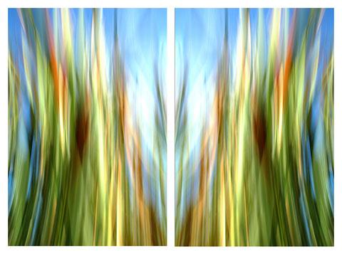 """Foto: """"otherONES"""" von Andreas Ender: klickt auf das Foto und ihr kommt in das Portfolio """"otherONES"""""""
