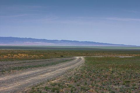 voyage, mongolie, désert de gobi, immensité, horizon, rachel jabot ferreiro