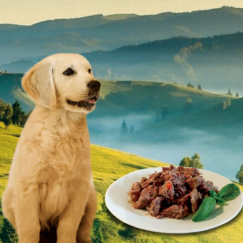 natural complete dog food