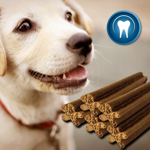 Hundesnacks, Leckerlis für Hunde, zuckerfrei, getreidefrei