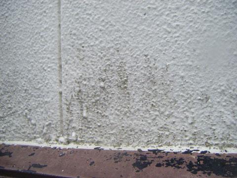 熊本T様邸。屋根塗装・外壁塗装状況。 塗装前BEFORE外壁状況。外壁のコケや・鉄板の塗膜剥がれが発生。