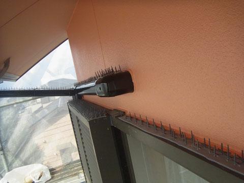 ハト対策 外壁塗装熊本