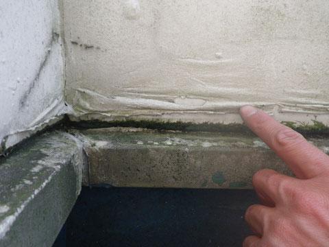 ベランダ壁 塗膜剥がれ・塗膜浮き・コケの発生。 熊本〇様宅