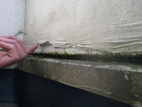 外壁の劣化。塗膜の浮き 剥がれ コケ