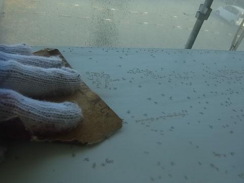 熊本市〇様家の外壁塗装及び屋根塗装時。鉄板庇屋根のケレン中。