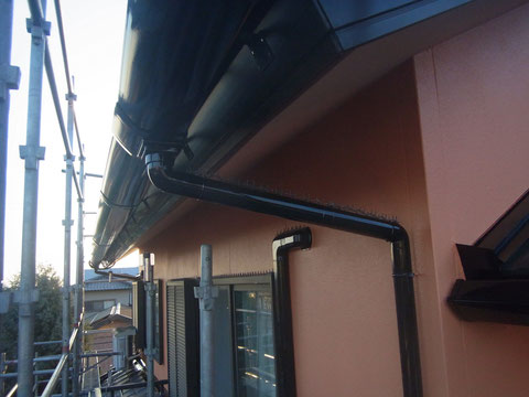 ハト 対策 外壁塗装熊本