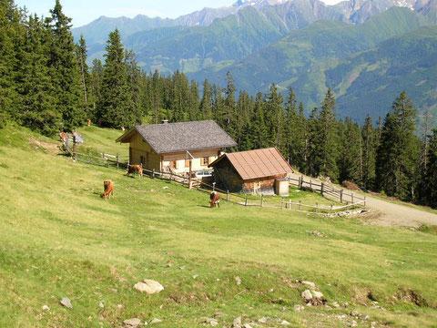 Manlitzalm,1800 m, ca 2- 3 Std.