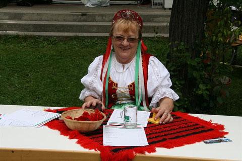 Magyar Nap 2010