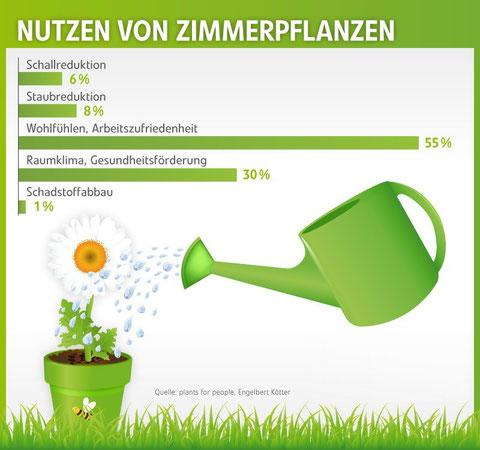 Nutzen von Zimmerpflanzen