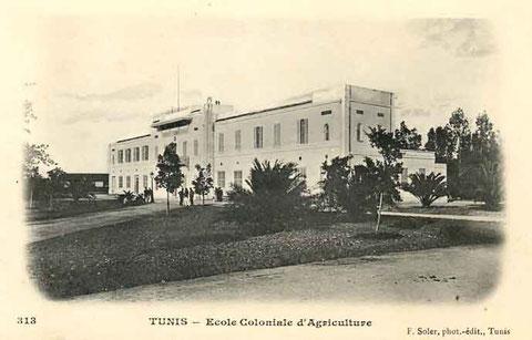 L'école d'ingénieurs agronomes de Tunis