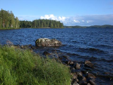Auch an Land vor Ihrem Domizil: Genießen Sie ungestörtes, ruhiges Angeln auch. vom Ufer oder vom Stein aus, direkt vor dem Mökki. Auch das Auslegen der vorhandenen Reuse ist möglich. Nehmen Sie unser Angelboot m. Außenborder und fahren Sie in die Bucht.