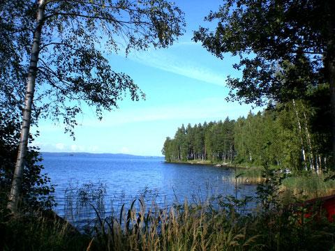 Große Bucht mit glasklarem Trinkwasser vor dem Ferienhaus. Blick Richtung Päijänne Hauptsee.