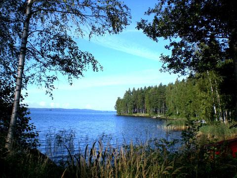 Blick in die Bucht vor dem Haus Richtung Hauptsee.