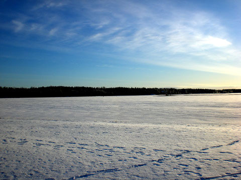Das könnten Ihre Langlaufspuren sein! Sonniger, arktischer Wintertag am zugefrorenen Päijänne See.