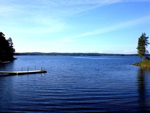 Wald und Wasser. Gemeinsame Badestelle mit Strandsauna, 300m vom Haus.