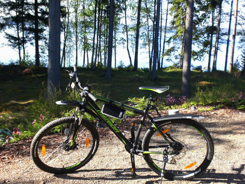 Neues Mountainbike