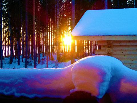 Entspannen Sie sich in unserer traditionellen, holzbefeuerten Blockhausauna am Haus mit Blick in die Abendsonne und auf den See.
