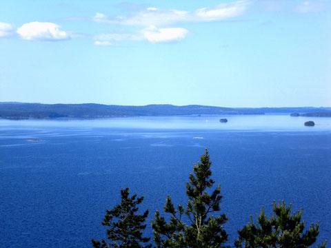 Kaum zu glauben, aber wahr. Bevorzugtes Segelrevier am Päijänne See, fast ohne Boote. Blick vom 1,5 km vom Haus entfernten Aussichtsturm auf den See.