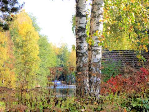 Entdecken Sie beim Wandern kleine Idylle, wie hier in Sysmä Virtaa.