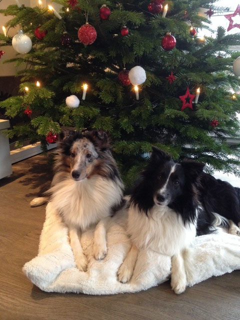 25.12.2014: Das erste Weihnachten für Mutter und Tochter