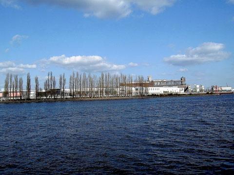 Hier standen die beiden Bockkrane, die Neubauhallen, der Volumenplatz, die Schwimmdocks sowie die Helgen V und VI