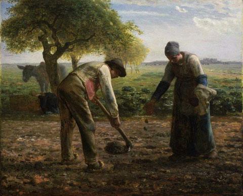 Les-Planteurs-de-Pommes-de-terre-de-Jean-François-Millet