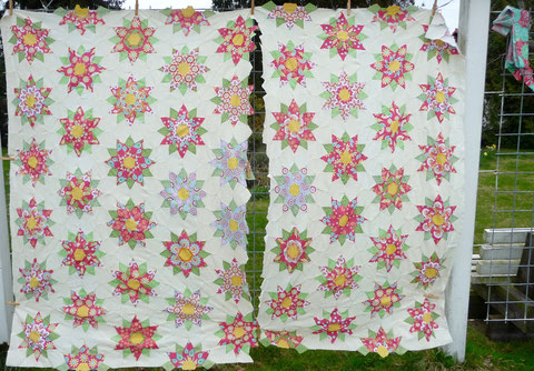 Tenderness Quilt 50 Flower + 8 half Flower fussy cutting