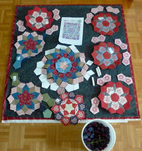Der neue Arbeitstitel: Multiflora Penny Rose