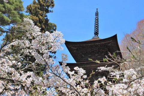 大法寺 国宝 三重の塔